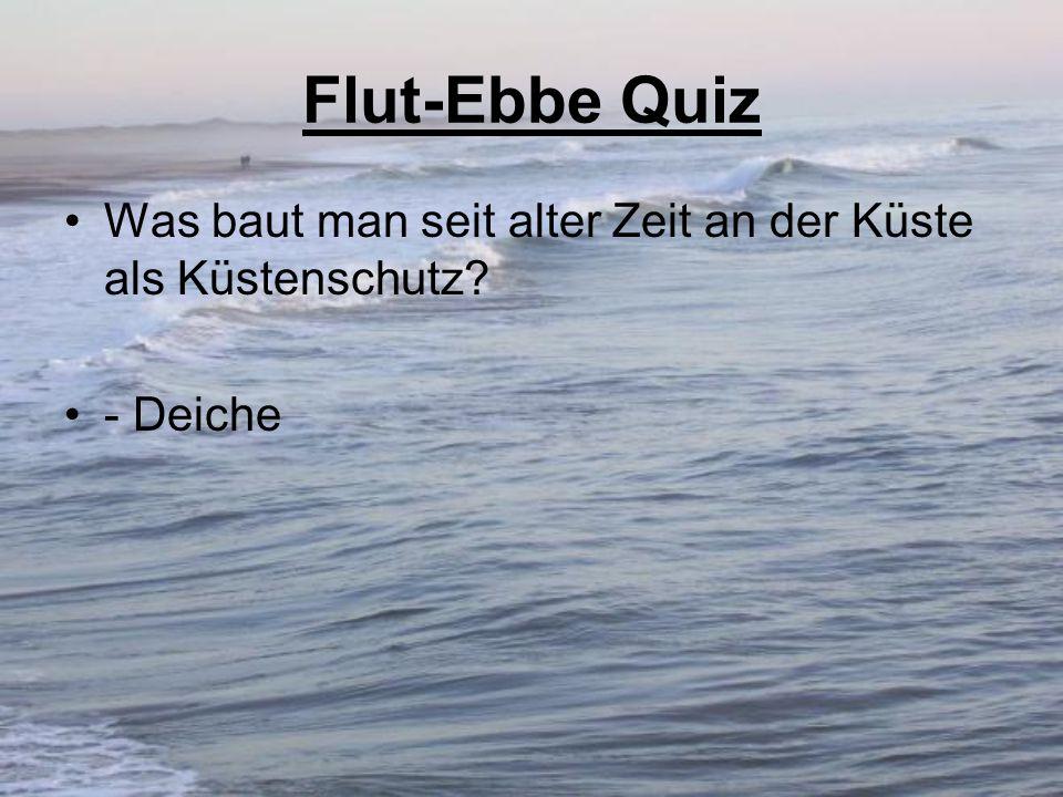 Flut-Ebbe Quiz Was baut man seit alter Zeit an der Küste als Küstenschutz? - Deiche