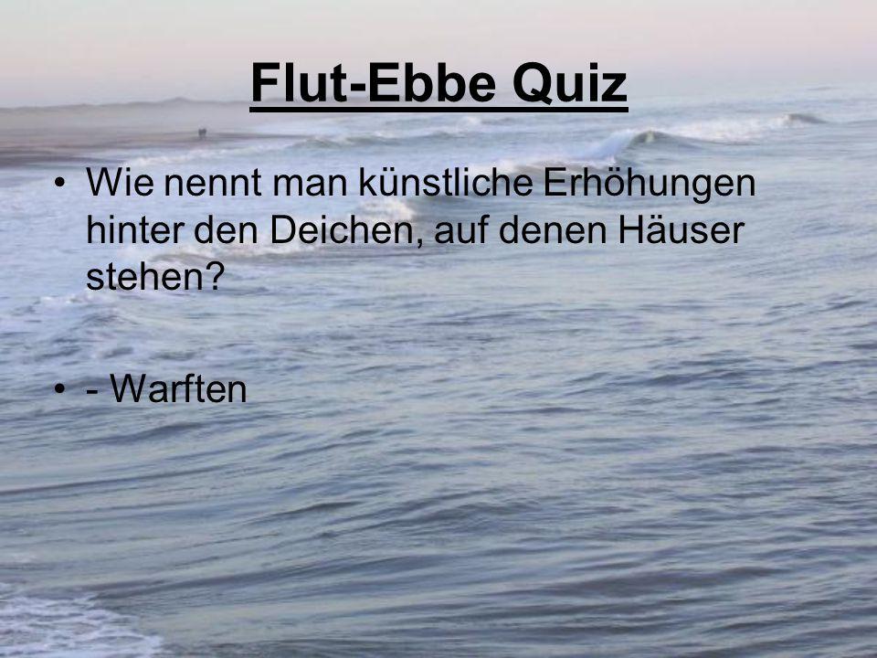 Flut-Ebbe Quiz Wie nennt man künstliche Erhöhungen hinter den Deichen, auf denen Häuser stehen? - Warften