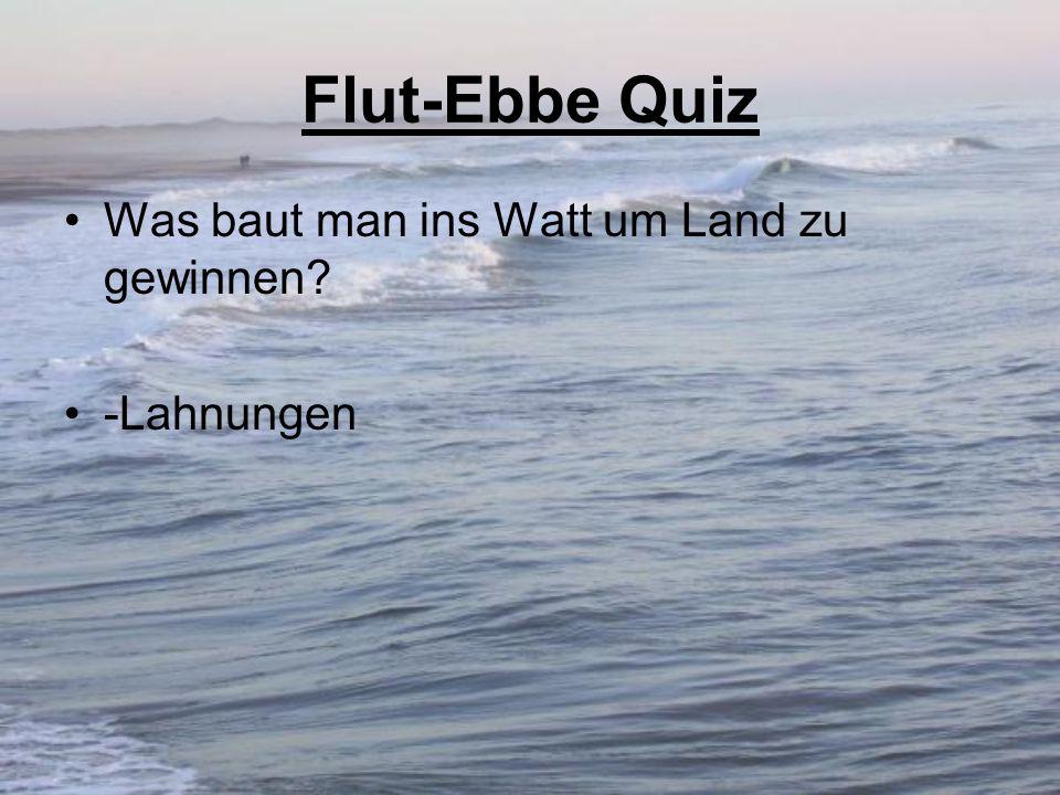 Flut-Ebbe Quiz Was baut man ins Watt um Land zu gewinnen? -Lahnungen