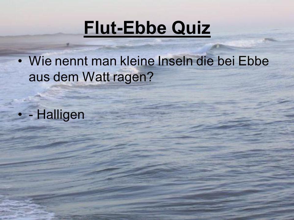 Flut-Ebbe Quiz Wie nennt man kleine Inseln die bei Ebbe aus dem Watt ragen? - Halligen