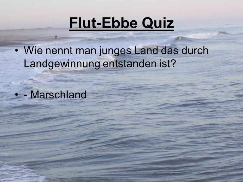 Flut-Ebbe Quiz Wie nennt man junges Land das durch Landgewinnung entstanden ist? - Marschland