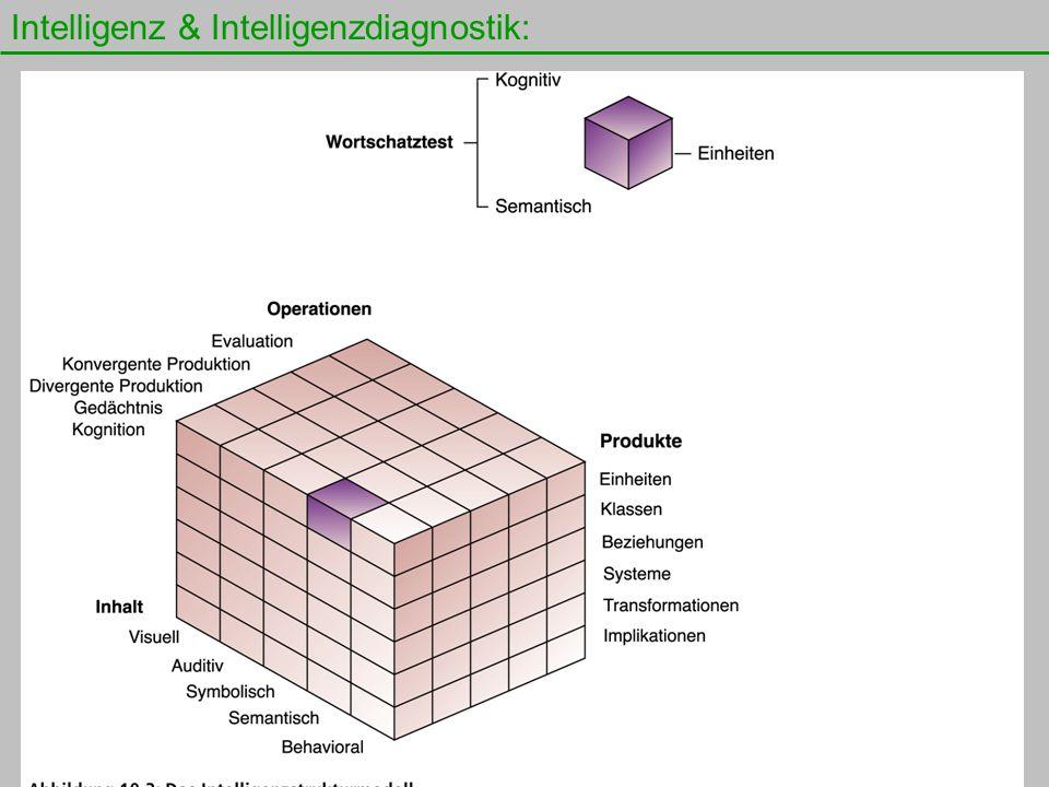 Intelligenz & Intelligenzdiagnostik: 14