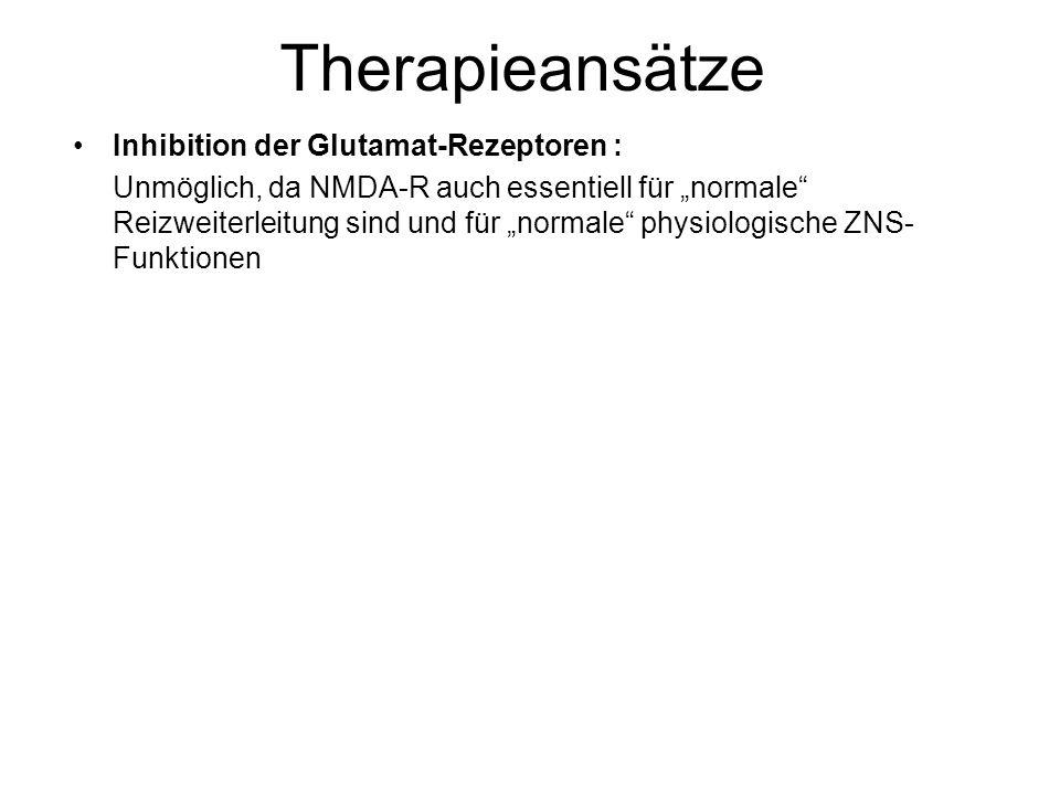 """Therapieansätze Inhibition der Glutamat-Rezeptoren : Unmöglich, da NMDA-R auch essentiell für """"normale Reizweiterleitung sind und für """"normale physiologische ZNS- Funktionen"""
