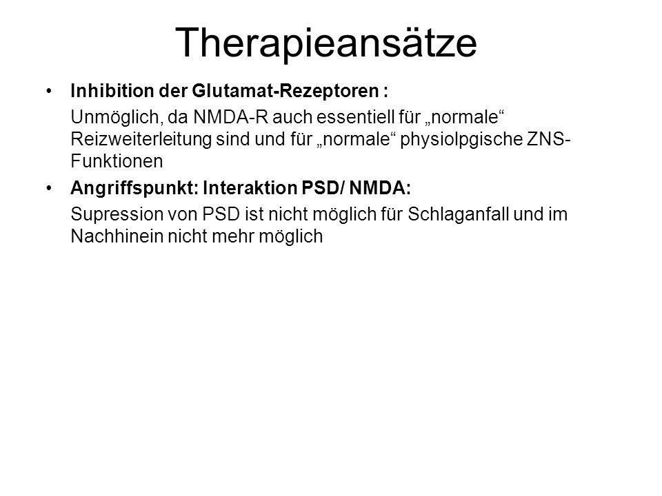 """Therapieansätze Inhibition der Glutamat-Rezeptoren : Unmöglich, da NMDA-R auch essentiell für """"normale Reizweiterleitung sind und für """"normale physiolpgische ZNS- Funktionen Angriffspunkt: Interaktion PSD/ NMDA: Supression von PSD ist nicht möglich für Schlaganfall und im Nachhinein nicht mehr möglich"""