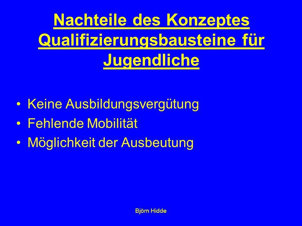 Björn Hidde Keine Ausbildungsvergütung Fehlende Mobilität Möglichkeit der Ausbeutung Nachteile des Konzeptes Qualifizierungsbausteine für Jugendliche