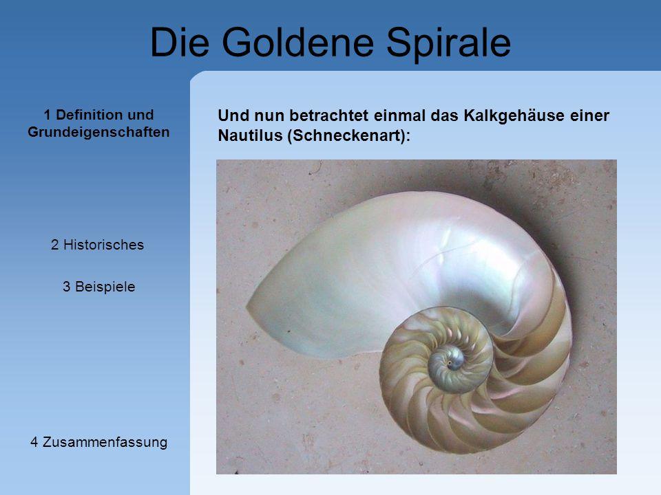 Die Goldene Spirale Und nun betrachtet einmal das Kalkgehäuse einer Nautilus (Schneckenart): 1 Definition und Grundeigenschaften 2 Historisches 3 Beis