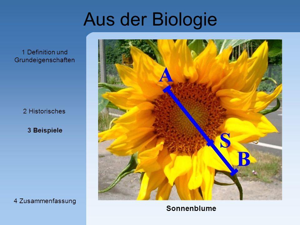 Aus der Biologie Sonnenblume 1 Definition und Grundeigenschaften 2 Historisches 3 Beispiele 4 Zusammenfassung