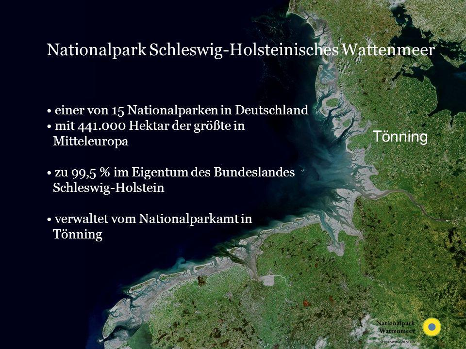 GI, AK Umweltdatenbanken - Hamburg, 21. Mai 2007 Selection – time period