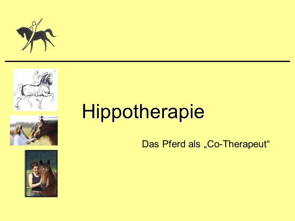 """06.01.2008Eva Bstieler1 Hippotherapie Das Pferd als """"Co-Therapeut"""""""