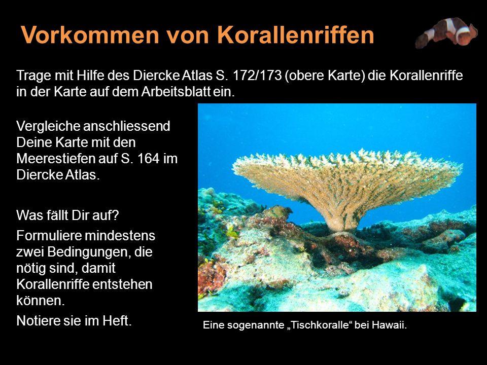 Vergleiche deine Lösung mit folgenden Angaben: Korallenriffe kommen nur in den Tropen vor, etwa zwischen 32 Grad nördlicher und südlicher Breite.