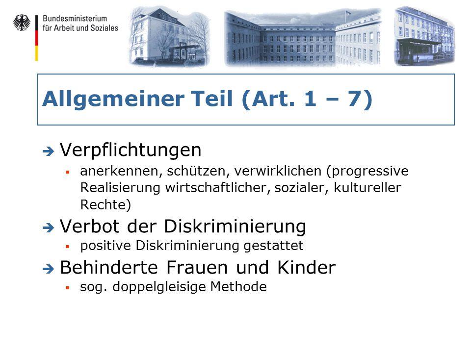 Allgemeiner Teil (Art.