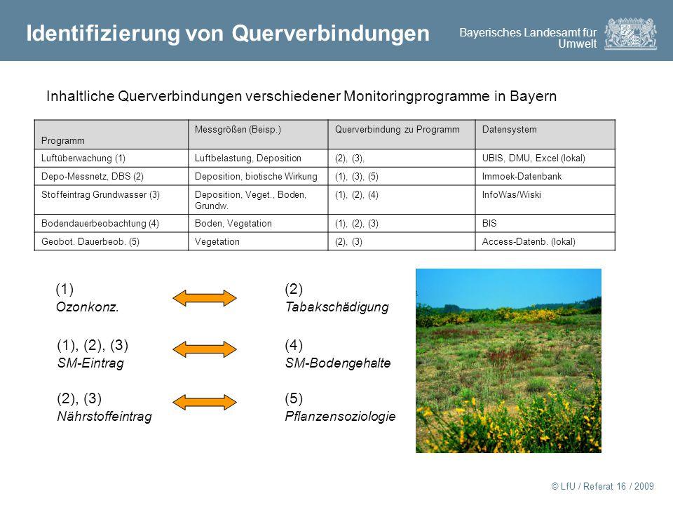 Bayerisches Landesamt für Umwelt © LfU / Referat 16 / 2009 Identifizierung von Querverbindungen Inhaltliche Querverbindungen verschiedener Monitoringprogramme in Bayern Programm Messgrößen (Beisp.)Querverbindung zu ProgrammDatensystem Luftüberwachung (1)Luftbelastung, Deposition(2), (3),UBIS, DMU, Excel (lokal) Depo-Messnetz, DBS (2)Deposition, biotische Wirkung(1), (3), (5)Immoek-Datenbank Stoffeintrag Grundwasser (3)Deposition, Veget., Boden, Grundw.