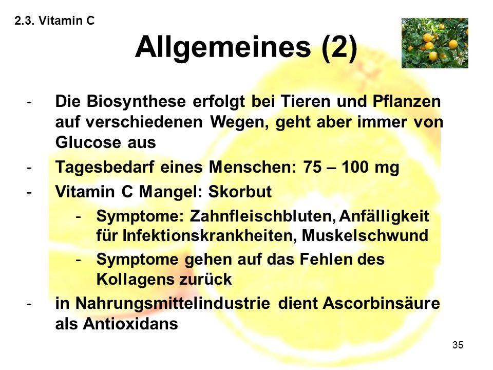 35 2.3. Vitamin C Allgemeines (2) -Die Biosynthese erfolgt bei Tieren und Pflanzen auf verschiedenen Wegen, geht aber immer von Glucose aus -Tagesbeda