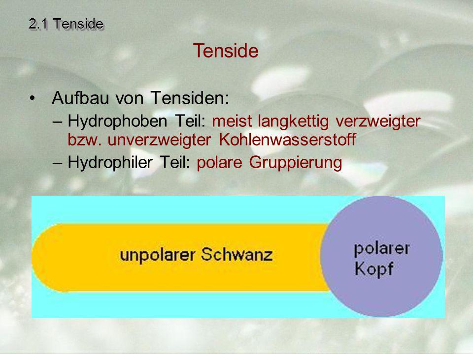 2.1 Tenside Aufbau von Tensiden: –Hydrophoben Teil: meist langkettig verzweigter bzw.