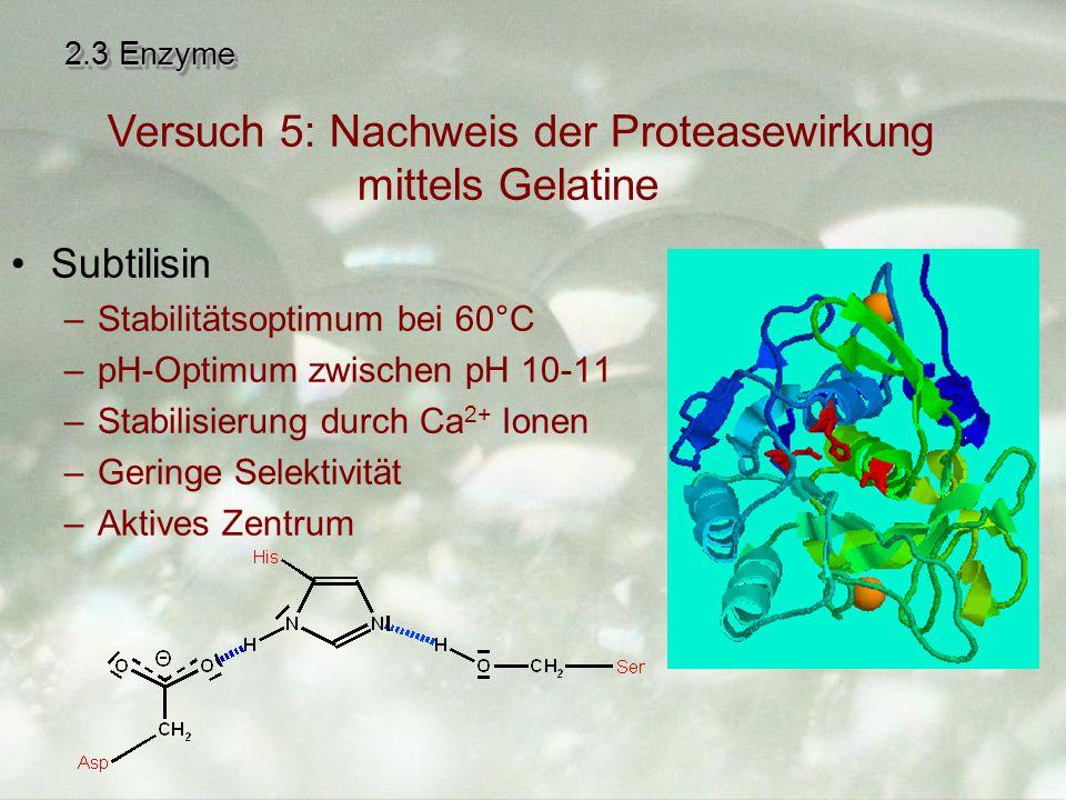 2.3 Enzyme Subtilisin –Stabilitätsoptimum bei 60°C –pH-Optimum zwischen pH 10-11 –Stabilisierung durch Ca 2+ Ionen –Geringe Selektivität –Aktives Zentrum Versuch 5: Nachweis der Proteasewirkung mittels Gelatine