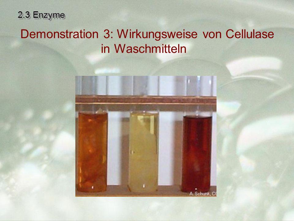 Demonstration 3: Wirkungsweise von Cellulase in Waschmitteln