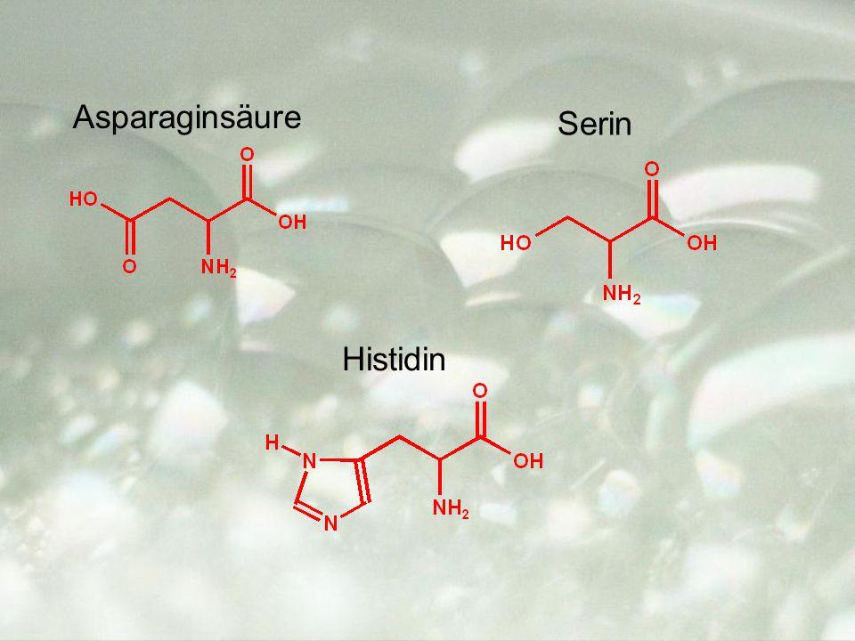 Asparaginsäure Histidin Serin