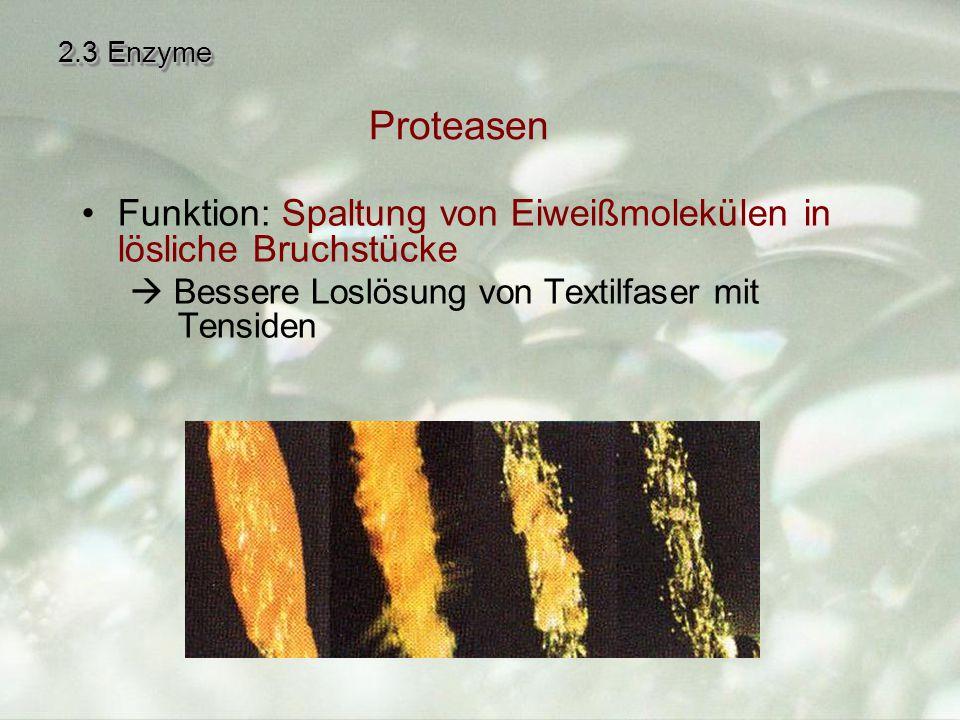 2.3 Enzyme Funktion: Spaltung von Eiweißmolekülen in lösliche Bruchstücke  Bessere Loslösung von Textilfaser mit Tensiden Proteasen