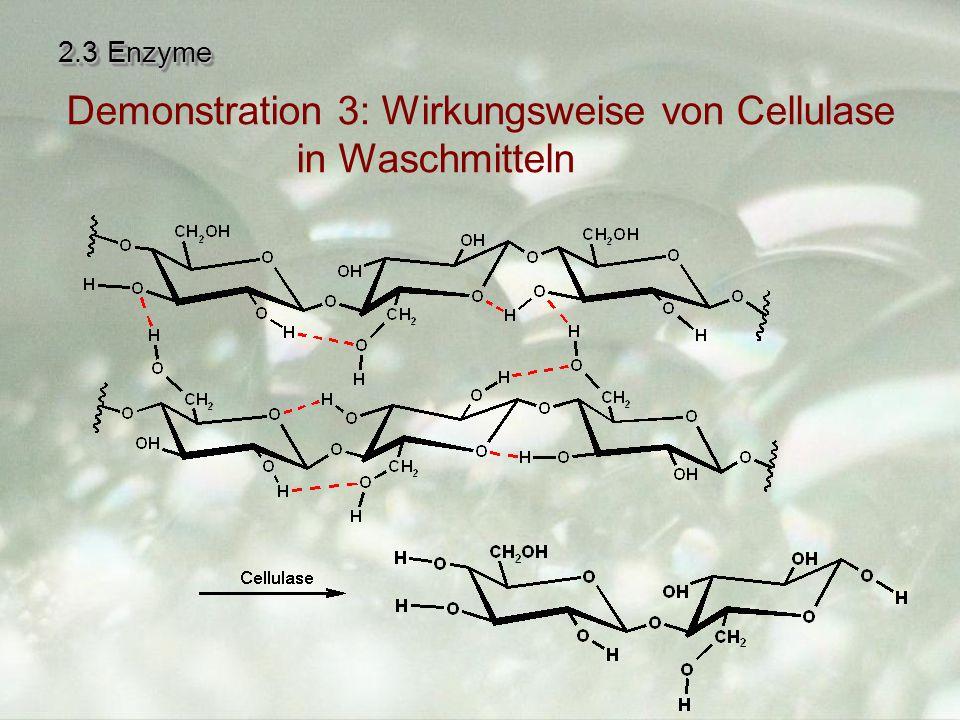 2.3 Enzyme Demonstration 3: Wirkungsweise von Cellulase in Waschmitteln