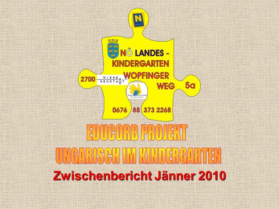 Zwischenbericht Jänner 2010