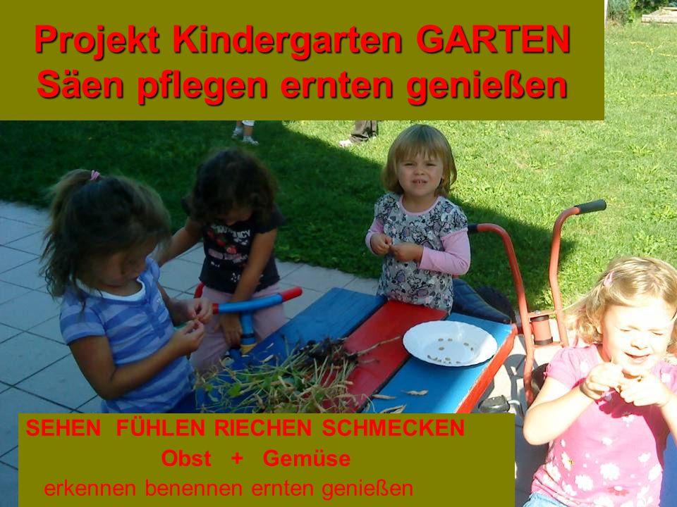 Projekt Kindergarten GARTEN Säen pflegen ernten genießen SEHEN FÜHLEN RIECHEN SCHMECKEN Obst + Gemüse erkennen benennen ernten genießen