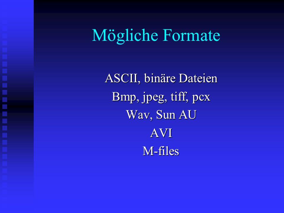 Mögliche Formate ASCII, binäre Dateien Bmp, jpeg, tiff, pcx Wav, Sun AU AVIM-files