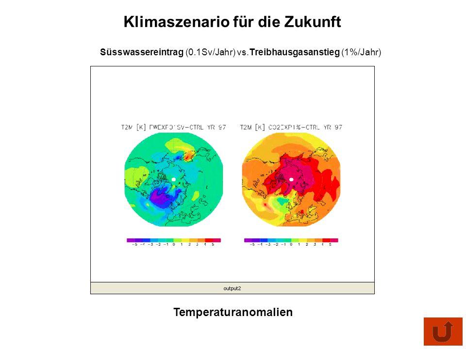 Süsswassereintrag (0.1Sv/Jahr) vs.Treibhausgasanstieg (1%/Jahr) Klimaszenario für die Zukunft Temperaturanomalien