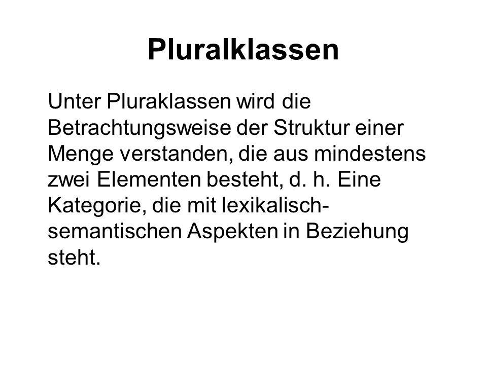 Pluralklassen Unter Pluraklassen wird die Betrachtungsweise der Struktur einer Menge verstanden, die aus mindestens zwei Elementen besteht, d. h. Eine