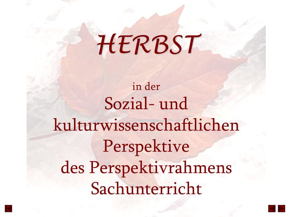HERBST HERBST in der Sozial- und kulturwissenschaftlichen Perspektive des Perspektivrahmens Sachunterricht