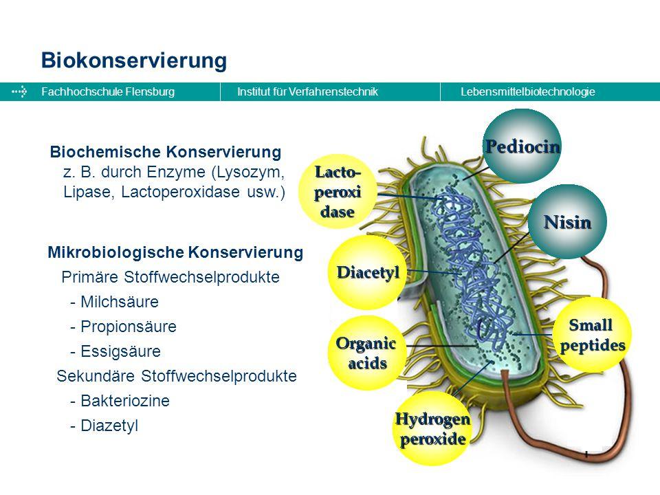 Fachhochschule FlensburgInstitut für VerfahrenstechnikLebensmittelbiotechnologie Biokonservierung Biochemische Konservierung z. B. durch Enzyme (Lysoz