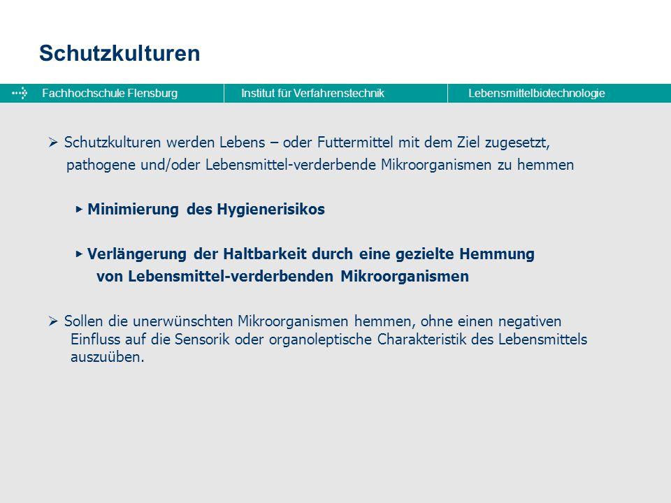 Fachhochschule FlensburgInstitut für VerfahrenstechnikLebensmittelbiotechnologie Schutzkulturen  Schutzkulturen werden Lebens – oder Futtermittel mit