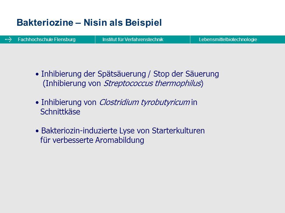 Fachhochschule FlensburgInstitut für VerfahrenstechnikLebensmittelbiotechnologie Bakteriozine – Nisin als Beispiel Inhibierung der Spätsäuerung / Stop