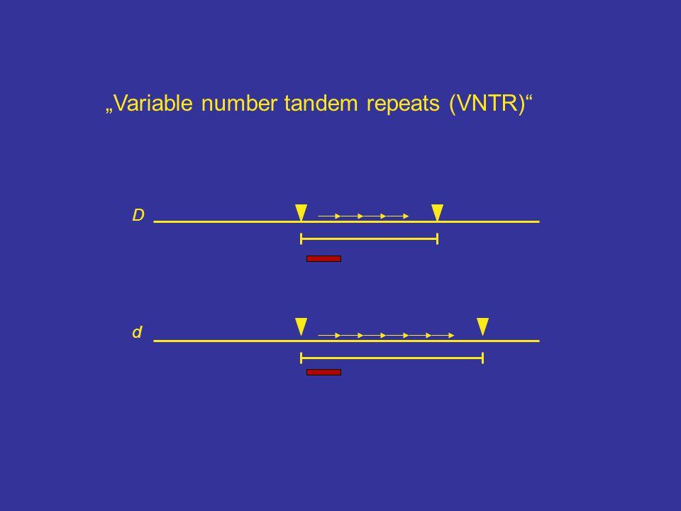 """D d """"Variable number tandem repeats (VNTR)"""""""