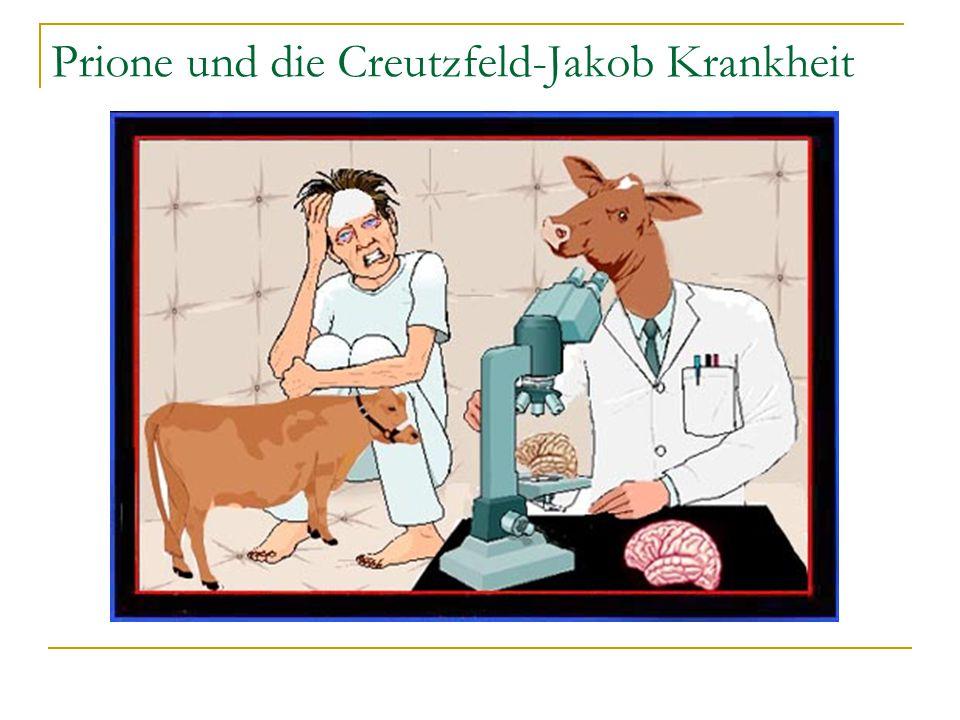 Prione und die Creutzfeld-Jakob Krankheit
