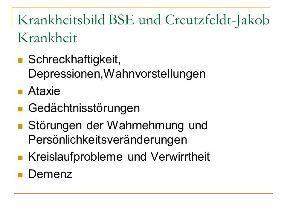 Krankheitsbild BSE und Creutzfeldt-Jakob Krankheit Schreckhaftigkeit, Depressionen,Wahnvorstellungen Ataxie Gedächtnisstörungen Störungen der Wahrnehm