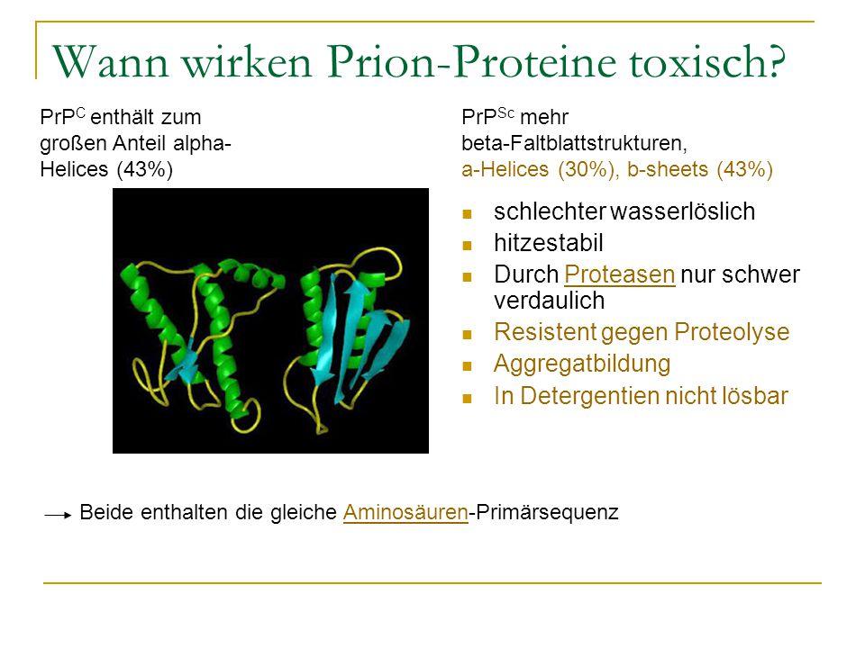 schlechter wasserlöslich hitzestabil Durch Proteasen nur schwer verdaulichProteasen Resistent gegen Proteolyse Aggregatbildung In Detergentien nicht lösbar Wann wirken Prion-Proteine toxisch.