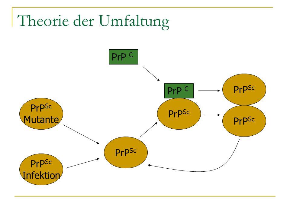Theorie der Umfaltung PrP C PrP Sc PrP C PrP Sc Mutante PrP Sc Infektion