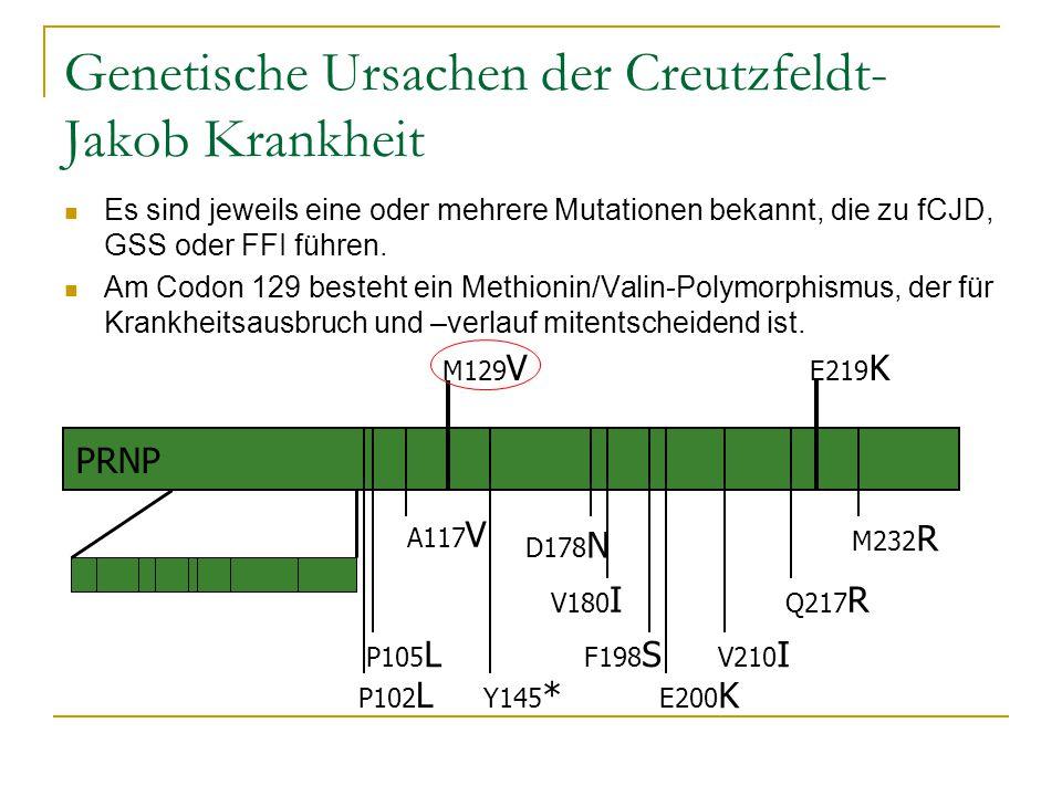 Genetische Ursachen der Creutzfeldt- Jakob Krankheit Es sind jeweils eine oder mehrere Mutationen bekannt, die zu fCJD, GSS oder FFI führen. Am Codon
