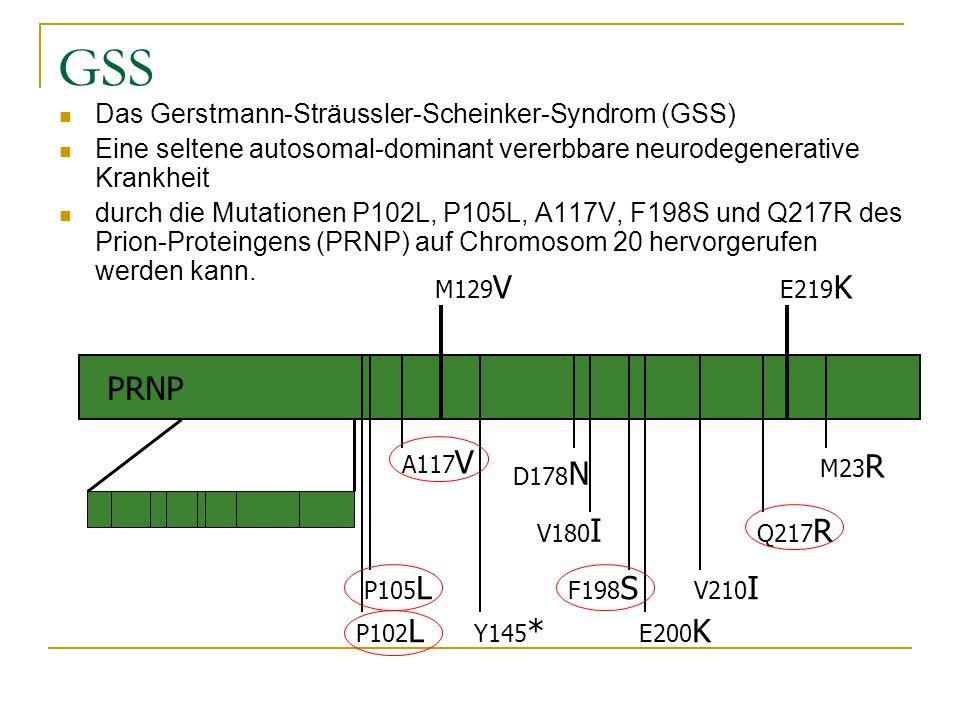 GSS Das Gerstmann-Sträussler-Scheinker-Syndrom (GSS) Eine seltene autosomal-dominant vererbbare neurodegenerative Krankheit durch die Mutationen P102L, P105L, A117V, F198S und Q217R des Prion-Proteingens (PRNP) auf Chromosom 20 hervorgerufen werden kann.