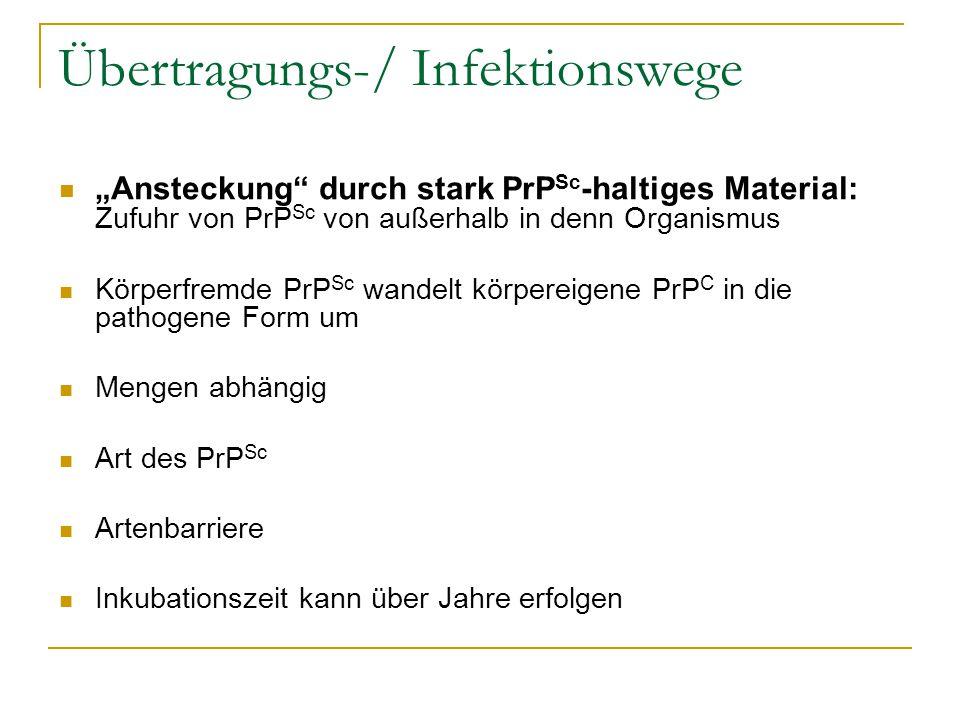"""Übertragungs-/ Infektionswege """"Ansteckung"""" durch stark PrP Sc -haltiges Material: Zufuhr von PrP Sc von außerhalb in denn Organismus Körperfremde PrP"""