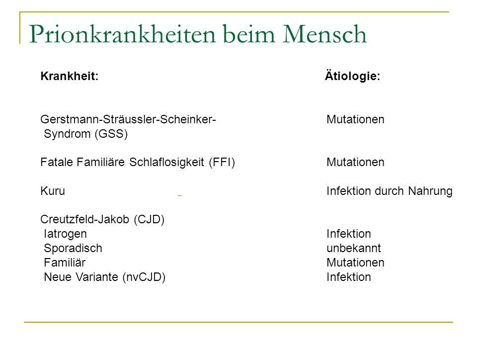 Prionkrankheiten beim Mensch Krankheit: Ätiologie: Gerstmann-Sträussler-Scheinker- Mutationen Syndrom (GSS) Fatale Familiäre Schlaflosigkeit (FFI) Mut