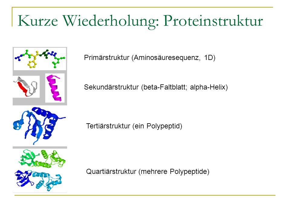 Kurze Wiederholung: Proteinstruktur Primärstruktur (Aminosäuresequenz, 1D) Sekundärstruktur (beta-Faltblatt; alpha-Helix) Tertiärstruktur (ein Polypeptid) Quartiärstruktur (mehrere Polypeptide)