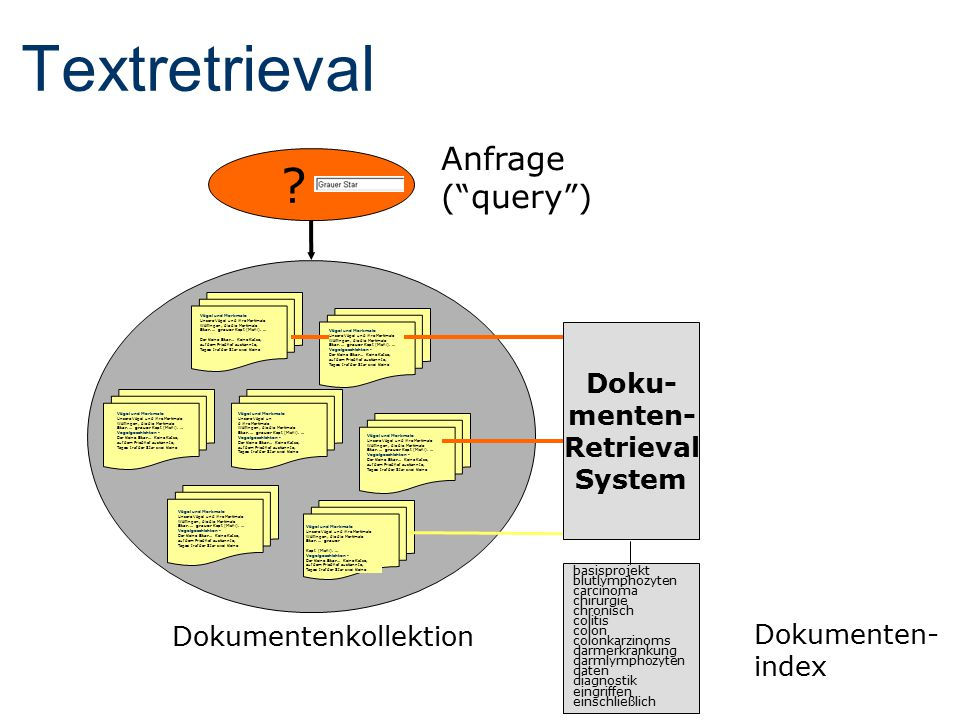 Udo Hahn Kornél Markó Michael Poprat Stefan Schulz Joachim Wermter Percy Nohama Text Knowledge Engineering Lab Medical Informatics Division Freiburg University, Germany http://www.coling.uni-freiburg.de Crossing Languages in Text Retrieval via an Interlingua
