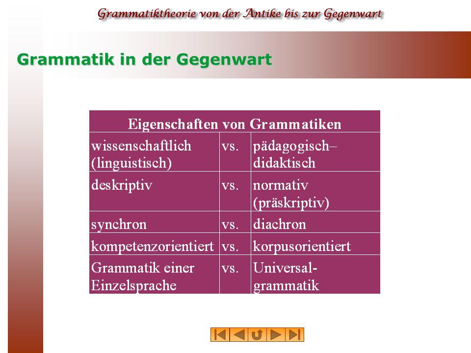 Theorieabhängige Grammatiktypen  traditionelle Grammatik  strukturalistische Grammatik  taxonomische Grammatik  generative Grammatik  kategoriale Grammatik  funktionale Grammatik etc.