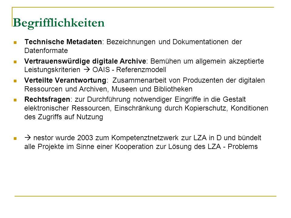 Begrifflichkeiten Technische Metadaten: Bezeichnungen und Dokumentationen der Datenformate Vertrauenswürdige digitale Archive: Bemühen um allgemein akzeptierte Leistungskriterien  OAIS - Referenzmodell Verteilte Verantwortung: Zusammenarbeit von Produzenten der digitalen Ressourcen und Archiven, Museen und Bibliotheken Rechtsfragen: zur Durchführung notwendiger Eingriffe in die Gestalt elektronischer Ressourcen, Einschränkung durch Kopierschutz, Konditionen des Zugriffs auf Nutzung  nestor wurde 2003 zum Kompetenztnetzwerk zur LZA in D und bündelt alle Projekte im Sinne einer Kooperation zur Lösung des LZA - Problems