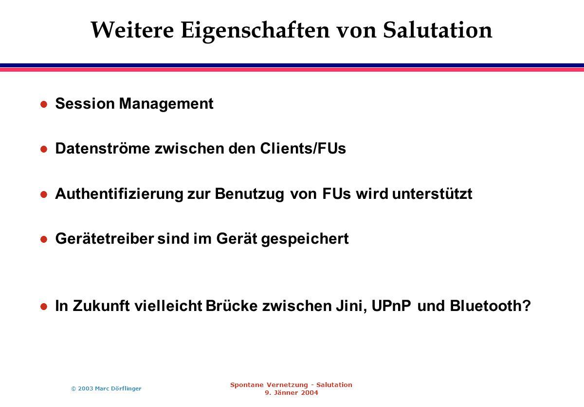 © 2003 Marc Dörflinger Spontane Vernetzung - Salutation 9.