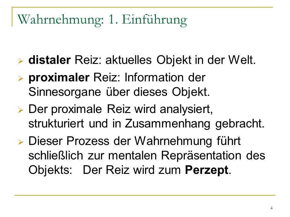 4 Wahrnehmung: 1.Einführung  distaler Reiz: aktuelles Objekt in der Welt.