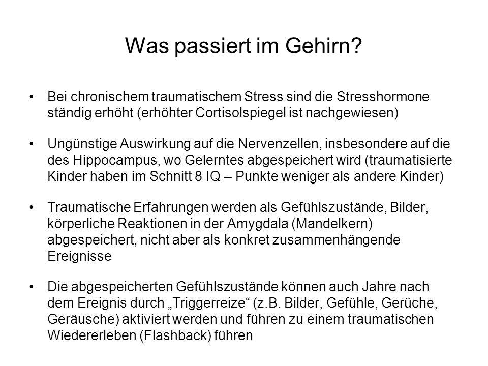 Was passiert im Gehirn? Bei chronischem traumatischem Stress sind die Stresshormone ständig erhöht (erhöhter Cortisolspiegel ist nachgewiesen) Ungünst