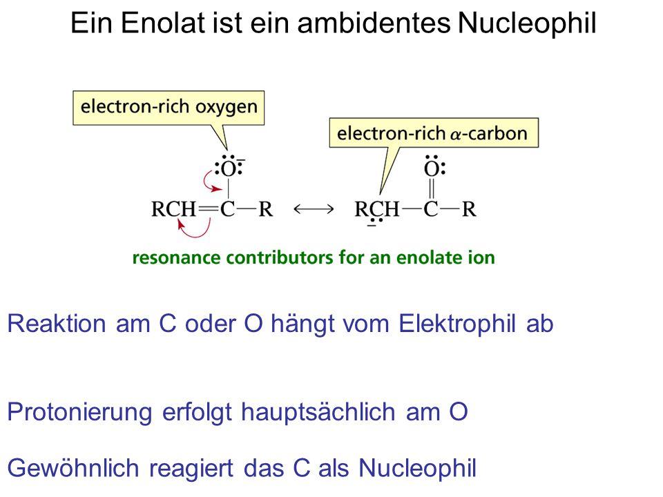 Ein Enolat ist ein ambidentes Nucleophil Reaktion am C oder O hängt vom Elektrophil ab Protonierung erfolgt hauptsächlich am O Gewöhnlich reagiert das