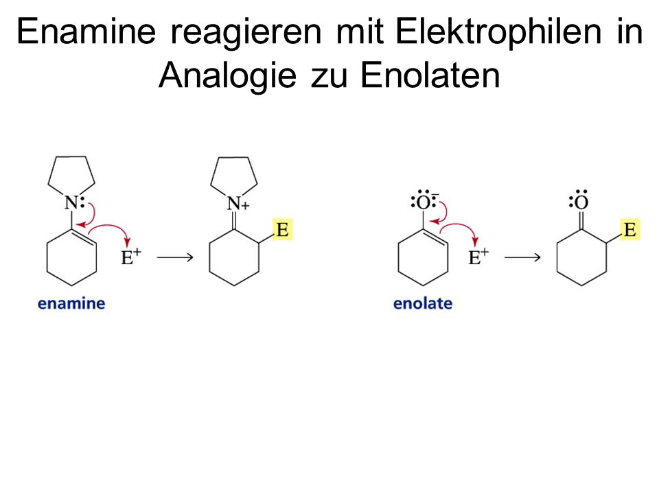 Enamine reagieren mit Elektrophilen in Analogie zu Enolaten